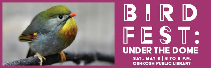 Bird Fest