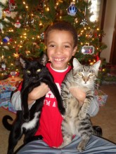 """This was X-mas Eve and Carter wanted a """"family"""" photo with his brothers (AKA - the cats)"""